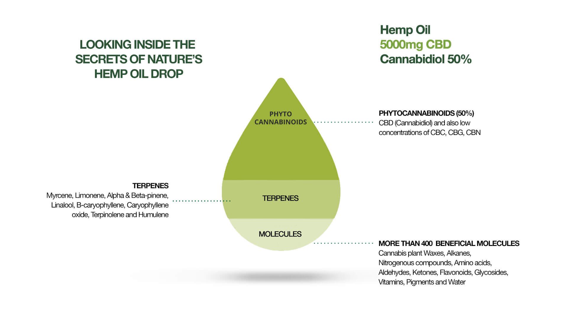 CBD oil content
