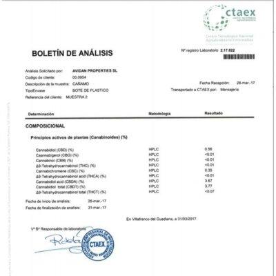 CBD Hash 1g Critical+ 3.8%